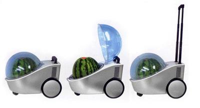 500x_watermelon-cooler (1)